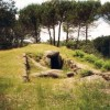 Dolmen of Arquinha da Moira, in Carregal do Sal